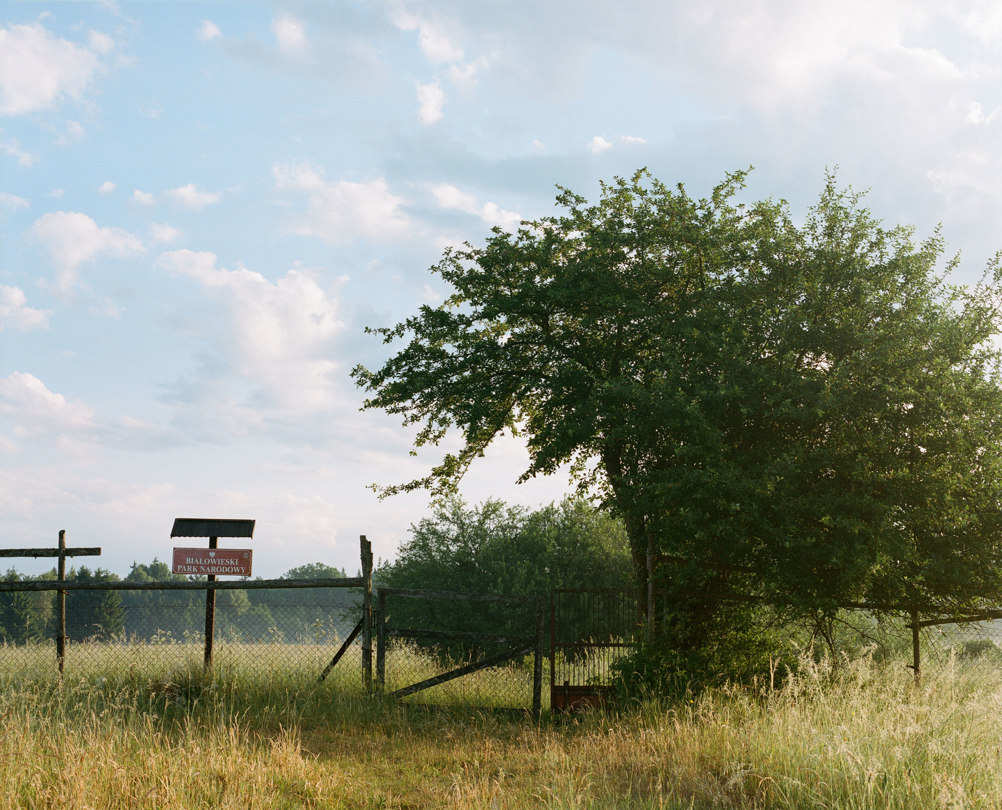 Białowieża National Park limit